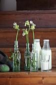 Old glass bottles with Star-of-Bethlehem flowers and full milk bottles on wooden steps