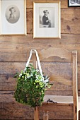 Romantic, festive, bag-shaped arrangement of moss, mistletoe and Star-of-Bethlehem on backrest of wooden chair