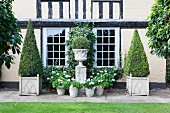 Flowering, potted plant around plinth with antique, Greek urn and topiary box trees in front of country house with lattice windows