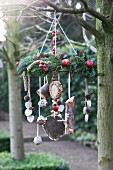 Decorative, wreath-shaped feeder for native birds hanging from branch