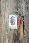 Nostalgic card with picture of little cowboy fixed to weathered wooden wall with washi tape next to delicate Virginia creeper leaf