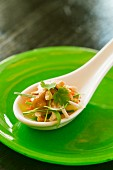 Smoked chicken with vegetables and coriander leaves on spoon (Asia)