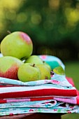Fresh apples on stack of cloths in garden