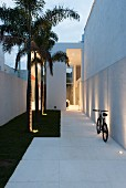 Narrow entrance path between tall white walls with recessed lamps in large paving slabs and small lawn with palm trees