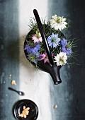 Nigella damascena flowers on black cast iron teapot