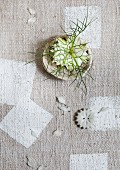 White Nigella flower in dish on rustic, pale grey tablecloth with pattern of white rectangles
