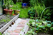 Path between vegetable beds in garden