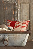 Red and white patterned cushion in vintage metal trough in front of rustic wooden door with peeling paint