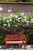 Red wooden bench with decorative backrest in front of flowering shrubs against garden wall