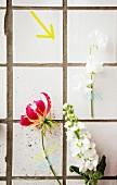 Einzelne Sommerblumen künstlerisch mit Masking Tapes an weiße Fliesenwand geklebt