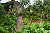 Gravel path leading to simple wooden house through vegetable patch in garden