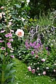 Rosa-, Pink- und Violetttöne in üppig blühenden Staudenbeeten