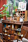 Old wooden cabinet containing gardening utensils