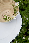 Wood anemones in bamboo bowl on tray in garden