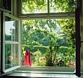 View through open window into summery garden