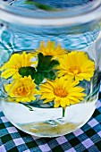 Yellow ox-eye daisies floating in glass of water decorating table