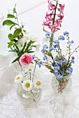 Vases of various flowers: forget-me-nots, pinks, apple blossom, daisies, hyacinth