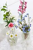Vasen mit verschiedenen Blumen: Vergissmeinnicht, Nelke, Apfelblüte, Gänseblümchen, Hyazinthe