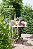 Pots and ceramic chicken on table with old metal base in garden next to paling fence