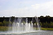 Fountains in basin in the park of the Palace of Versailles