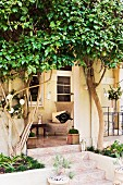 Furnished veranda with tiled floor outside old villa with espalier trees on façade