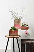Potted plants in paper bags printed with graphic patterns on stool and plinth
