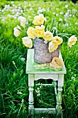 Yellow tulips on wooden stool on lawn