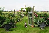 Ländlicher Garten, Hühner zwischen bepflanzten Amphoren und offenem Holztor mit Blick auf Rosenbüschen