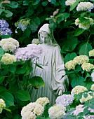 Statue of the virgin Mary amongst hydrangeas in garden