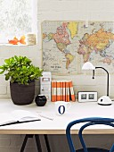 Money tree in dark pot and office utensils next to white desk lamp on table below map of world hung on whitewashed brick wall
