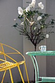 Delicate, vintage wire furniture painted yellow and turquoise in front-garden sunlight; white standard rose against facade in background