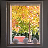 Golden autumn - decorative stones in windowsill and view of tree with yellow leaves in sunshine