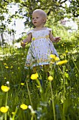 A toddler standing amongst wildflowers