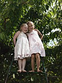 Two girls standing on a ladder underneath a cherry tree