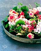 Flower arrangement with pink hydrangeas & blackberries