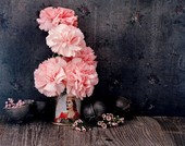 Still-life arrangement of pink carnations