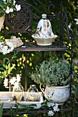 Glass cloches and potted thyme on garden shelves with summer jasmine to one side
