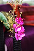 Pinkfarbene Blume und Blumenzweige in schwarzer Vase