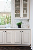 White cabinets and glass cabinet with potted plant on counter top; Irvine; California; USA