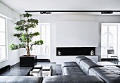 Elegant living room in black and white with masculine ambiance, leather corner sofa and tree in planter in corner