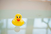 Close-up of a rubber duck in bathtub water against blurred background