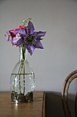 Purple clematis in glass vase on wooden table
