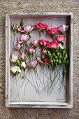 Roses of various colours arranged in vintage crate hanging on stone wall