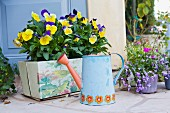 Watering can and flower pots on Balboa Island; California; USA