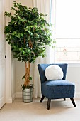 Upholstered chair with potted plant by window