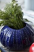 Ein Strauß Dill steht in blauem Keramiktopf