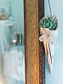 Succulents wrapped in paper cone hanging from gilt frame