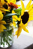 Sunflowers in a jar of water