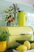 Still-life arrangement in shades of yellow against pastel green tiles; designer thermos flask on retro bread bin and herbs in yellow pot