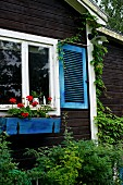 Summer house with dark wooden cladding, blue shutters on window and red geraniums in window box